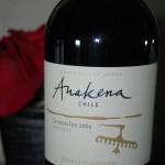 Anakena 2006 Single Vineyard Carmenere
