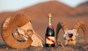 Extra Dry versus Brut Champagne – Which Is Drier?