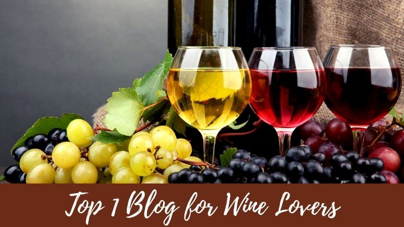 Top 1 Blog for Wine Lovers