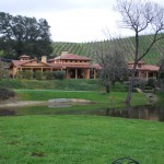 Click for a view of Chateau Felice from Tasting Room