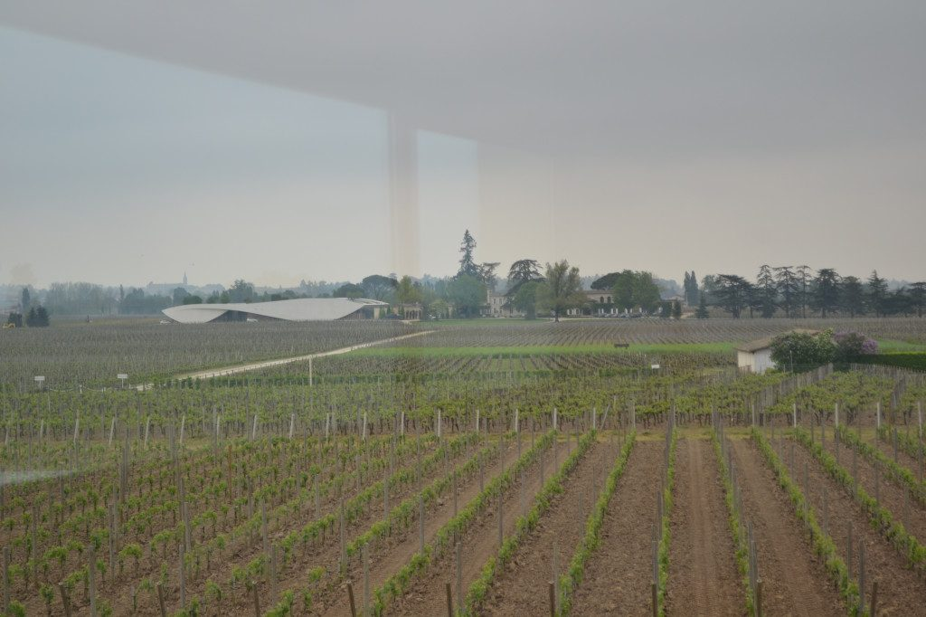 Vineyards of Chateau La Conseillante and neighbor Chateau Cheval Blanc